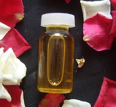 minyak lintah papua untuk memperbesar payudara minyak lintah papua