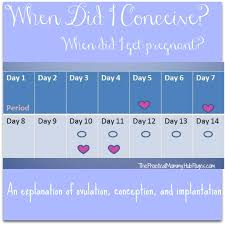 Light Bleeding Before Period When Did I Get Pregnant Or Conceive Wehavekids