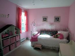 color combination in the girls room with pink and brown setup