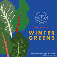 plant of the month club december plant of the month club winter greens murnane