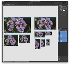 designer add ability to export all artboards automatically