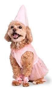 small dog halloween costumes for dachshunds and other small breeds