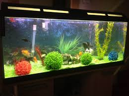 160 litre tank filter fish cabinet ornaments maldon essex