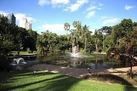 Botanic Gardens Brisbane City City Botanic Gardens Are Brisbane S Original Gardens