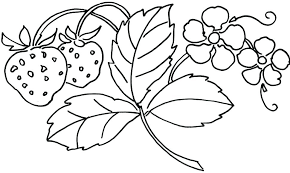 coloring pictures of flowers to print free coloring pages flowers download coloring pages flower color