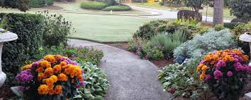Landscape Mounds Front Yard - traditional landscape and yard with exterior tile floors u0026 pathway