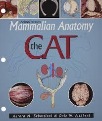 mammalian anatomy the cat aurora m sebastiani 9780895826831