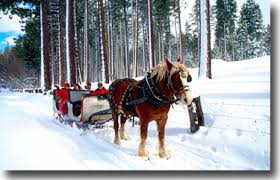 South Lake Tahoe Wedding Venues Sleigh Ride Weddings Winter Wedding In Lake Tahoe