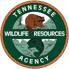 Tennessee wildlife tours images Sandhill crane festival tn gov png