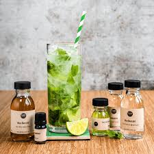 mojito cocktail bottle mojitos cocktail kit by taste cocktails notonthehighstreet com
