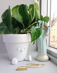 Easy To Care For Indoor Plants 18 Best Indoor Plants Good Inside Plants For Small Space Gardening