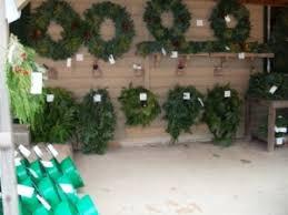 oklahoma christmas tree farms travelok com oklahoma u0027s official
