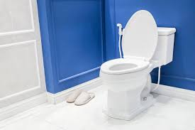 Comfort Height Toilet Reviews Unbeatable Guide Of 2017 Best Toilet Brands And Reviews
