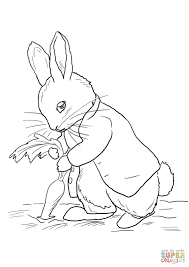 peter rabbit stealing carrots coloring page free printable