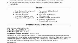 resume format for customer service executive roles dubai islamic bank immigration services officer sle resume lovely best solutions