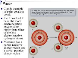 the chemical basis of life i atoms molecules and water ppt