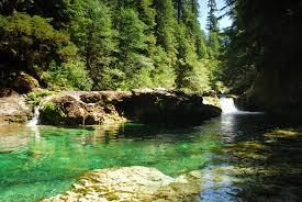 Opal Creek Oregon Map Opal Creek Wilderness Outdoor Project