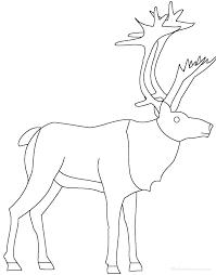 reindeer enchantedlearning