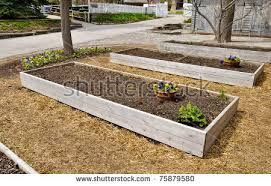raised bed garden stock images royalty free images u0026 vectors