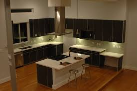 Cheap Kitchen Cabinets Tampa by Furniture Stunning Cabinet Style Cream Color Kitchen Cabinet