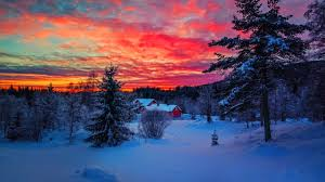 winter beautiful nice houses nature cold lovely frost amazing