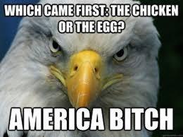 Freedom Eagle Meme - funniest bald eagle meme compilation america