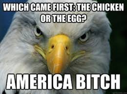 America Eagle Meme - funniest bald eagle meme compilation america