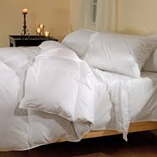 Comforter Belle Epoque Chateau Down Comforter Winter Weight Hayneedle