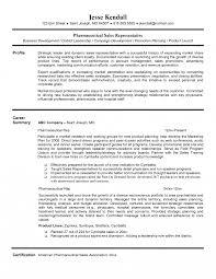 resume sle with career summary resume objectiveles manager retail medical sales objective sle
