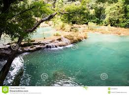 natural swimming pools stock photo image 36180020