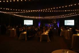 diy outdoor party lighting medfield wedding by invited special