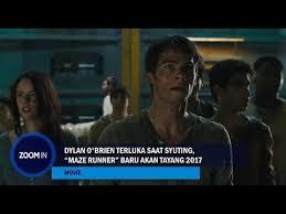 jadwal film maze runner 2 di indonesia dylan o brien terluka saat syuting maze runner baru akan tayang