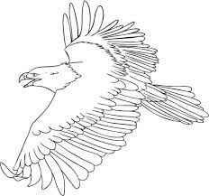 eagle color page coloring pages online
