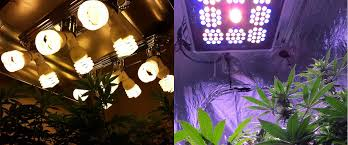 led grow light fixtures which led grow lights are best for growing cannabis grow weed easy