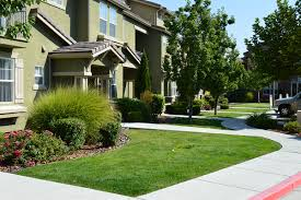 Reno Green Landscaping by The Importance Of Professional Reno Landscaping
