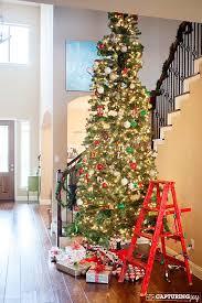 12 ft tree living 4 ft pre lit pine
