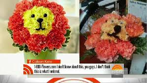 Dog Flower Arrangement 1 800 Flowers Customers Complain About Wilted Valentine U0027s Bouquets