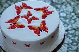 butterfly cake a2k a seasonal veg table butterfly cake