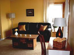 Decorative Ideas For Living Room Living Room Awesome Living Room Accent Wall Ideas Feature Wall