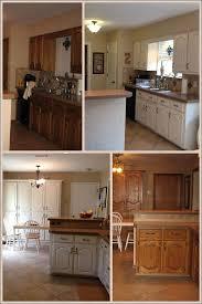 kitchen staining cabinets darker honey oak cabinets repainting
