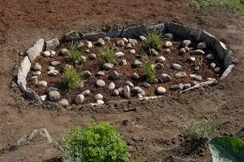 native wetland plants bellingham green design rain garden u0026 native plants