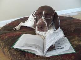 Best Recommended Materials Training U2013 Recommended Reading Great Lakes Gun Dogs