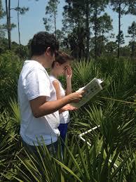 plant communities environmental nature center ces student research florida atlantic university center for