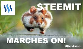 Good News Meme - steemit meme of the day this matches my steem post up tonight on