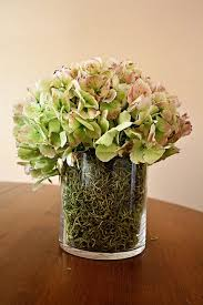 Brown Vase Fillers Ideas For Flower Vase Fillers With Natural Green Flower Nytexas