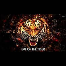 eye of the tiger dj roody feat jo mk shazam