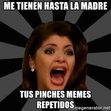 Pinches Memes - me tienen hasta la madre tus pinches memes repetidos soraya