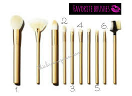 beauty review sonia kashuk lavish luxe brush set this brown queen