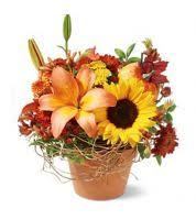 thanksgiving day flowers deltona fl florist send flowers deltona fl