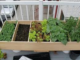 sensational design ideas apartment garden balcony vegetable herb
